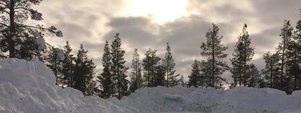 Floresta em Lapland finlandês na primavera de 2018, Levi/Sirkka, Foto de Stock Royalty Free