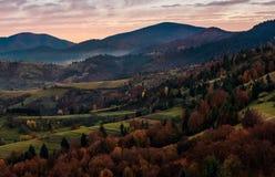 Floresta em montes no campo montanhoso no alvorecer fotografia de stock royalty free