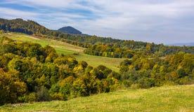 Floresta em montes no vale montanhoso do campo imagem de stock