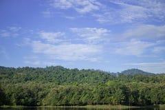 Floresta em Tailândia imagens de stock royalty free