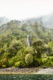 Floresta em um dia chuvoso, o Chile Imagens de Stock Royalty Free