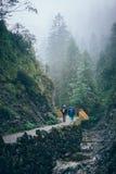 Floresta enevoada da montanha Imagens de Stock Royalty Free