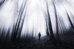 Floresta escura surreal com a névoa e o fantasma que andam através das árvores Fotos de Stock