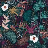 Floresta escura tropical sem emenda do verão do esboço retro bonito da mão ilustração do vetor