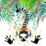 Floresta exótica tropical, folhas verdes, animais selvagens, lêmure, ilustração da aquarela natureza exótica incomum do fundo da  ilustração royalty free