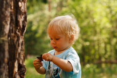 Floresta exporing do bebê imagens de stock royalty free