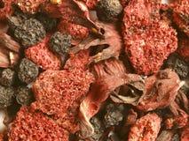 A floresta frutifica chá Foto de Stock