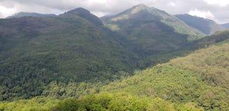 Floresta grande dos montes da paisagem da natureza Imagens de Stock Royalty Free