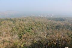 Floresta indiana fotografia de stock