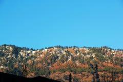 Floresta indiana da montanha das montanhas dos Himalayas em Manikaran imagens de stock