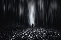 Floresta infinita surreal com o homem que anda no outro lado Fotos de Stock