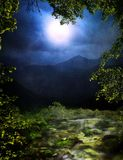 Floresta mágica fotos de stock royalty free