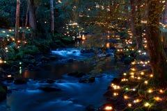 Floresta mágica na noite Fotos de Stock Royalty Free