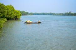A floresta a maior dos manguezais do mundo em Bangladesh próximo um rio bonito Fotografia de Stock