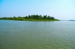 A floresta a maior dos manguezais do mundo em Bangladesh próximo um rio bonito Imagem de Stock