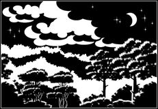 Floresta na noite Fotografia de Stock Royalty Free