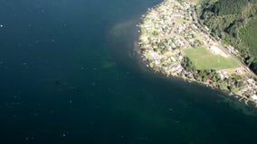 Floresta na paisagem da vista para o mar de cima em Nova Zelândia filme