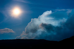 Floresta na silhueta com céu noturno estrelado e Lua cheia Imagem de Stock Royalty Free