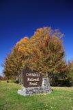 Floresta nacional Cherokee imagem de stock