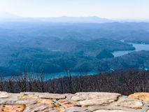 Floresta nacional Cherokee Foto de Stock