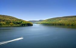 Floresta nacional de Allegheny Foto de Stock