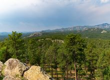 Floresta nacional de Black Hills, South Dakota, EUA fotografia de stock