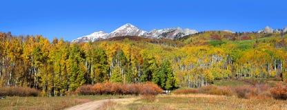 Floresta nacional de Gunnison imagem de stock