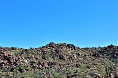 Floresta nacional de Tonto, fora da estrada 87, o Arizona U S Ministério da Agricultura, Estados Unidos fotografia de stock
