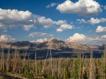 Floresta nacional do Uinta-Wasatch-esconderijo, lago mirror, Utá, Estados Unidos, América, perto do lago slat e do Park City imagens de stock royalty free