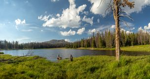 Floresta nacional do Uinta-Wasatch-esconderijo, lago mirror, Utá, Estados Unidos, América, perto do lago slat e do Park City fotos de stock