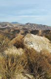 Floresta nacional dos capelães do Los, país da garganta Fotos de Stock Royalty Free