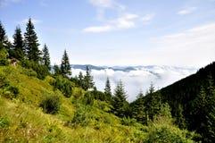 Floresta nas montanhas em um fundo das nuvens imagens de stock royalty free