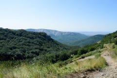 Floresta natural surpreendente da montanha do verde do olhar Fotografia de Stock
