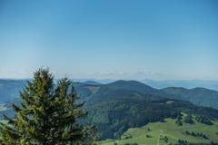 A Floresta Negra em Alemanha com o propósito dos cumes Fotos de Stock Royalty Free