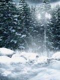Floresta nevado ilustração stock