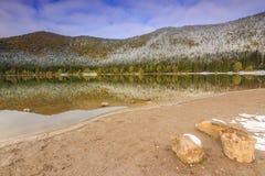 Floresta nevado colorida e lago limpo, lago St Ana, a Transilvânia, Ro Imagens de Stock