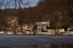 Floresta, neve e pássaros - França Fotografia de Stock Royalty Free