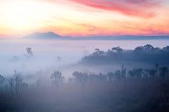 Floresta nevoenta bonita de Misty Clouds durante montanhas do nascer do sol imagem de stock royalty free