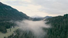 Floresta nevoenta nas montanhas filme