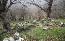 Floresta nevoenta profunda imagem de stock royalty free