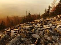 A floresta no monte aumentou do fundo nevoento do outono do amanhecer. foto de stock royalty free