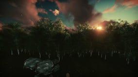 Floresta no nascer do sol, cavalos do vidoeiro no prado verde ilustração stock