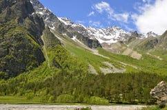 A floresta no pé da montanha Imagens de Stock Royalty Free