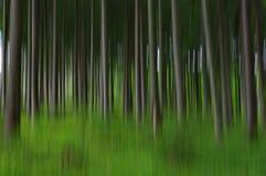 Floresta obscura abstrata fotos de stock