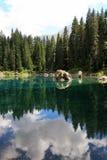 A floresta, os pinhos & o céu refletiram no lago Fotos de Stock Royalty Free