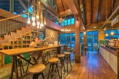 Floresta pequena interior do café Foto de Stock