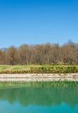 Floresta perto da lagoa de água agradável Foto de Stock Royalty Free