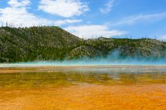 Floresta queimada na mola prismático grande Yellowstone fotografia de stock royalty free
