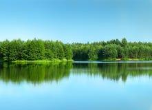 Floresta refletida em um lago limpo Fotografia de Stock