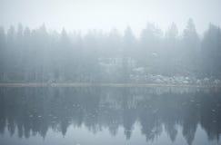 Floresta refletida na água Foto de Stock